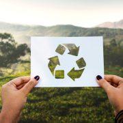entrevista al presidente de la asociación de reciclaje